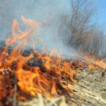 Весенне-летний пожароопасный период