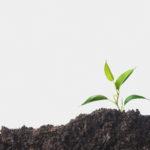 8 мая состоится антикризисный вебинар «Сельское хозяйство и агропром»