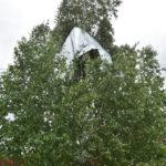Шифер, столбы и деревья: последствия вчерашнего урагана в Ярково