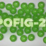 Вирус «пофигизма» во время пандемии