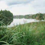 Поправки в Конституцию направлены на защиту окружающей среды