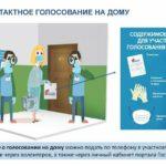 Облизбирком обеспечит бесконтактное голосование по поправкам к Конституции РФ на дому