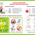 69 жителей Тюменской области заболели клещевым энцефалитом и боррелиозом