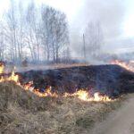 В Тюменской области оштрафовали 30 нарушителей противопожарного режима на 590 тыс. рублей