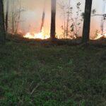 Пожары в районе: борьба продолжается