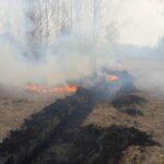 Более тысячи человек задействованы в борьбе с пожарами в Тюменской области