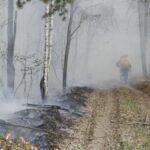 Площадь пожаров в Тюменской области увеличилась до 52 861 га