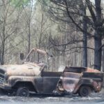 Площадь природных пожаров за сутки в Тюменской области уменьшилась на более 1,1 тыс. га