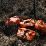 14 пожаров на площади более 3 тыс. га действуют в Тюменской области