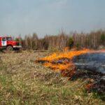 Пожары в районе: два локализованных, один действующий