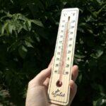 В августе в Тюменской области восемь раз был перекрыт исторический максимум температуры воздуха